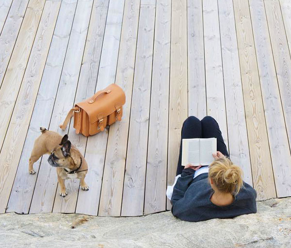 Women reading a book with her dog and leather satchel.