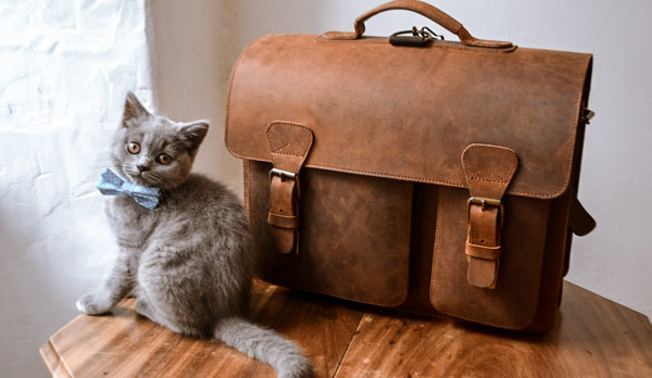 Brown leather satchel with cute cat.